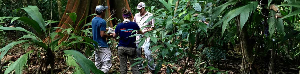 About the Terrestrial Ecosystems Analysis Lab | Earth ...